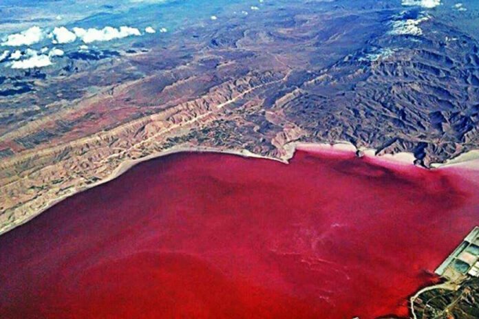 Pink Wetland of Chabahar