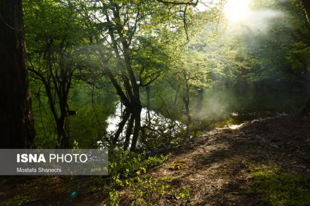 Nature of Northern Iran in Spring 4