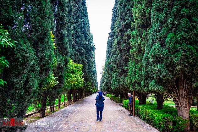 Eram Garden, Southern Iran