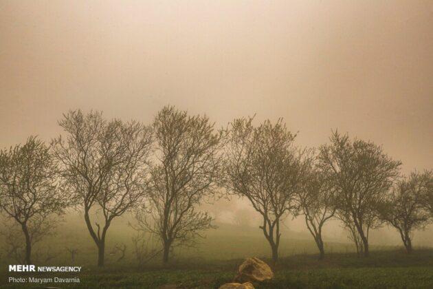 Nature of Northeastern Iran 5