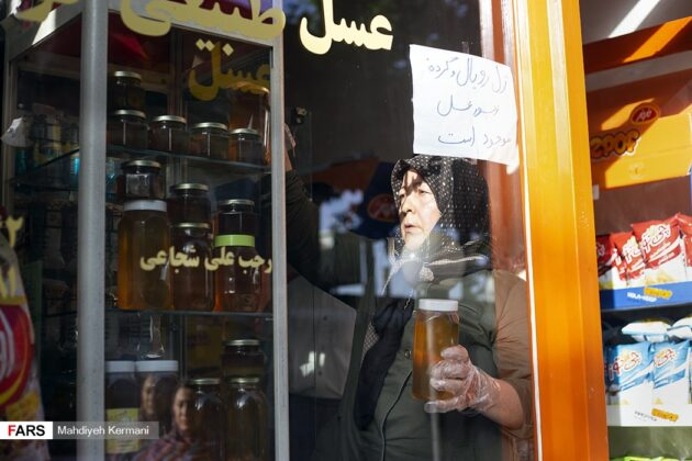 Peculiar Inheritance Makes Iranian Woman Exporter of Honey 7