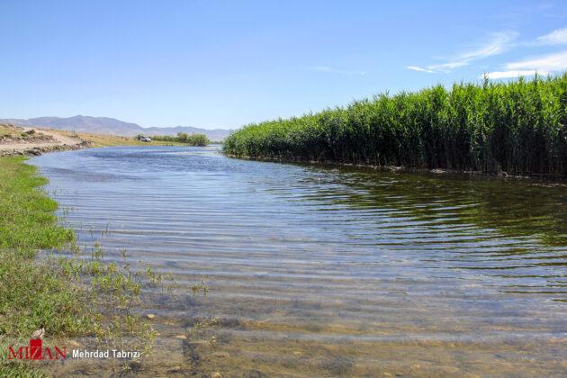 Iran's Nature in Photos Dargah Sangi International Wetland 14