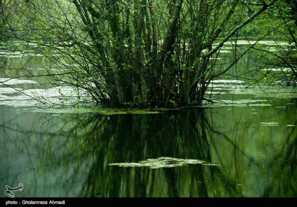 Qadikola Lagoon