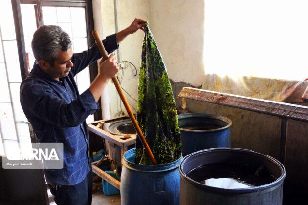 Silkworm Breeding; A 600-Year-Old Career in NW Iran