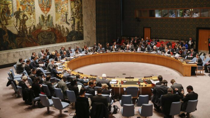Iran Asks Niger to Counter US Polices as UNSC President