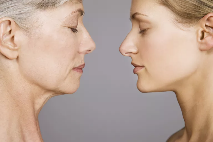 Why Our Body Starts to Decline with Age