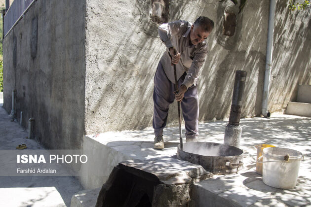 Sultana Production; A 1,000-Year-Old Career in Iranian Village