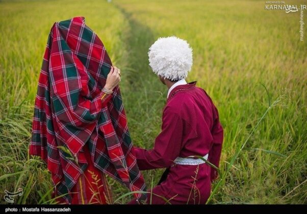 Bandar Torkaman women