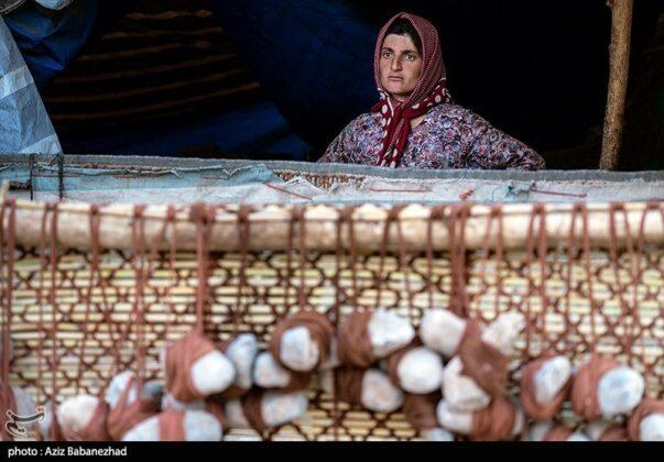 Iranian Nomads