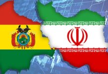 Rouhani Expresses Iran's Support for New Bolivian Gov't