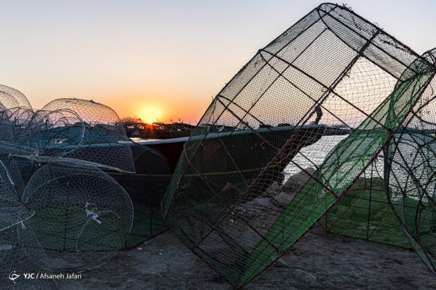 A Basket Fish Trap Made in Southern Iran
