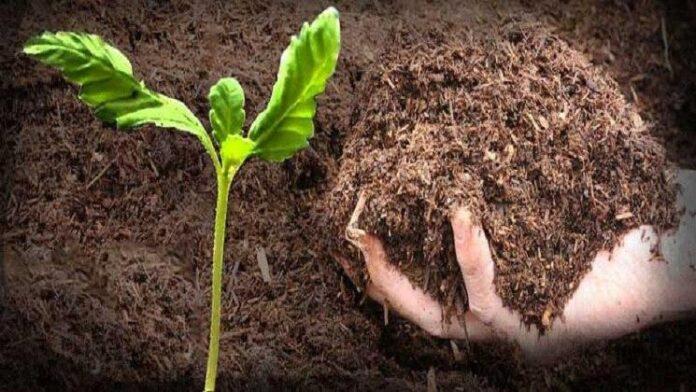Iran Produces Fertilizer from Sewage Sludge