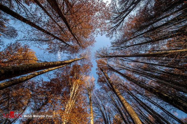 Iran nature