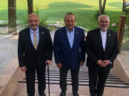 Iran, Turkey, Afghanistan Back Afghan Peace Process, Fight on Terror